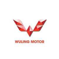 clients_wuling
